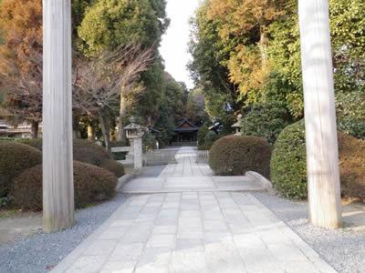 kaiko02.jpg