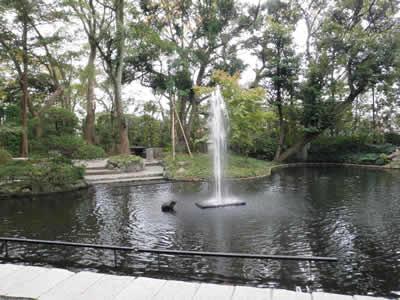 samukawa20121106.jpg